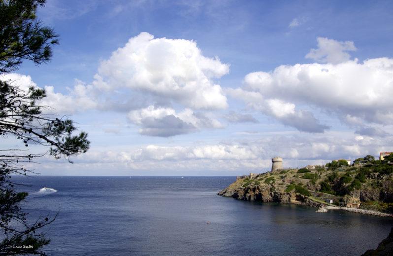 _IGP5831 Capraia la Torre del porto web